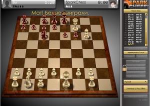 Шахматы 0602